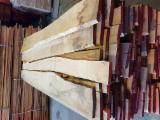 Find best timber supplies on Fordaq - White Ash Loose from Croatia