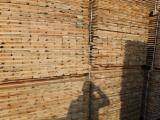 Find best timber supplies on Fordaq - Pine/Spruce for pallets and packaging