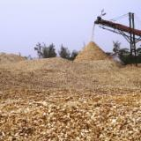 Find best timber supplies on Fordaq - AGRO-FEED - Pine wood chips/ Eucalyptus pulpwood chip