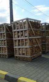 Ponude - Grab, Bukva Drva Za Potpalu/Oblice Cepane Rumunija