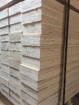 Panouri LVL - Vand LVL-lemn masiv laminat Plop China