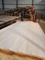 Veneer Supplies Network - Wholesale Hardwood Veneer And Exotic Veneer - Ilomba veneer
