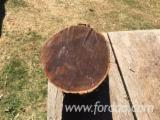 Schnittholzstämme, PEFC/FFC
