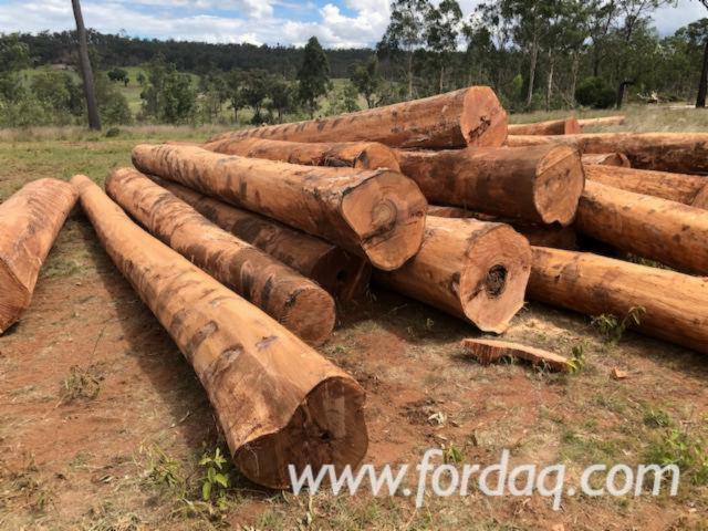Red-Ironbark--Narrow-Leaf-Logs