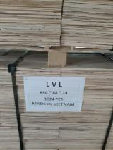 Natural Eco Friendly LVL plywood from Vietnam