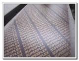 Vend Contreplaqué De Coffrage 7 - 40 mm Chine