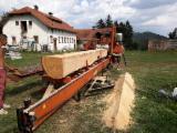 Wood-Mizer Woodworking Machinery - Used Wood-Mizer LT40 Log Band Saw Horizontal For Sale Romania