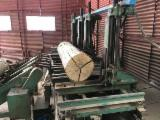 Primultini Woodworking Machinery - Used Primultini -- 1990 Sawmill For Sale Romania