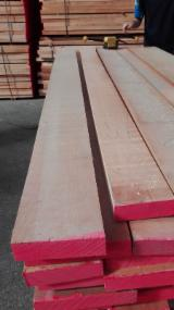 Find best timber supplies on Fordaq - Pallavisini Legnami Srl - Beech Planks (boards) Italy