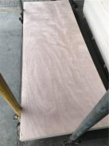 Okume/ Sapelli Plywood Door Skin Panel