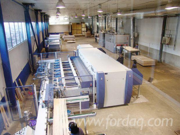 Weinig Dimter High Frequency 4500 press