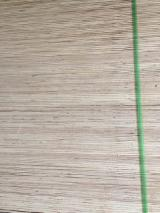 5/7/8/8.5/11/11.5/14/18 mm Commercial Plywood with Red Face from Vietnam Supplier