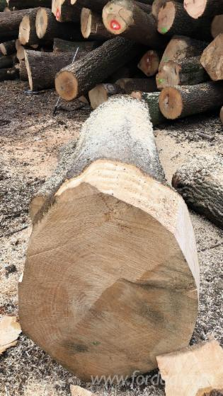 White-Ash-Oak-Saw-Logs