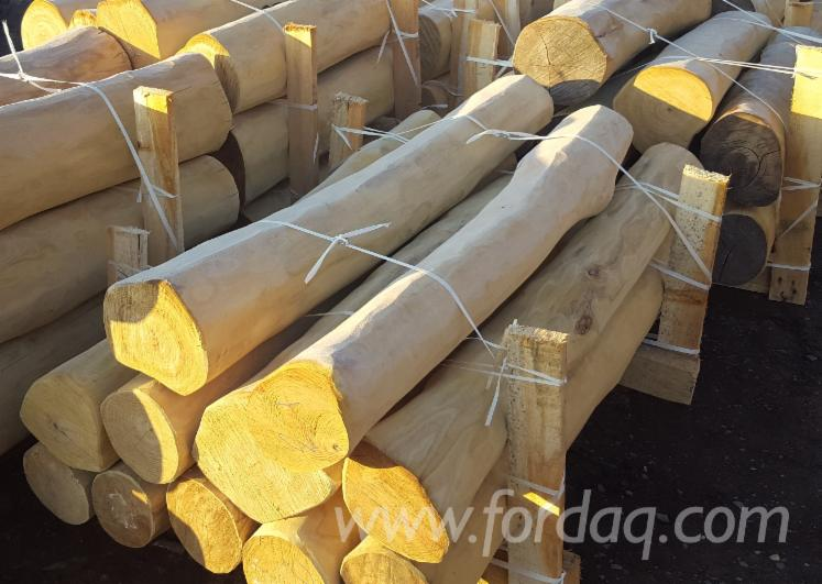 Robinia poles without sapwood