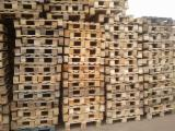 Pallets, Packaging and Packaging Timber - Any Pallet Russia
