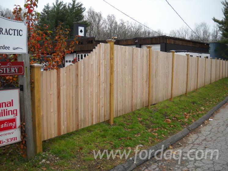 Chinese Cedar- Fir - Spruce Fencing