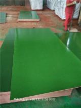 12-18 mm Green waterproof PP Plastic film laminated Plywood