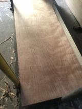 胶合板, 门皮面板