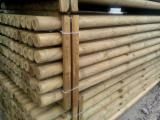 Find best timber supplies on Fordaq - MASSIV-DREV LLC - Machine-Rounded Pine Poles