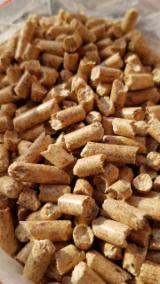 Energie- Und Feuerholz - DINplus Kiefer - Föhre Holzpellets