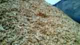 Energie- Und Feuerholz Südamerika - Sägehackschnitzel