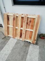栈板、包装及包装用材 亚洲 - 苏格兰松, 1000 立方公尺 每个月
