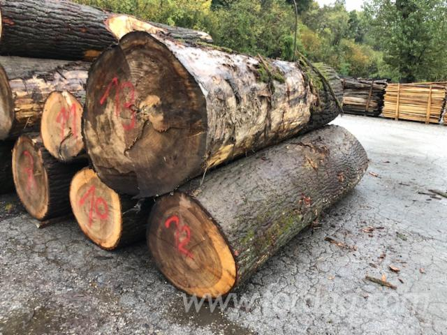 Poplar-Veneer-Logs