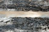 栈板、包装及包装用材 欧洲 - 堆积棍棒, 全新
