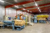 Find best timber supplies on Fordaq - Tarmeko  - Automatic veneer scarf-jointing line with two presses and a Kuka robot