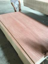 Veneer and Panels - Commercial Plywood, Bintangore BB/CC, Furniture grade, 2.5-25mm thickness, FSC