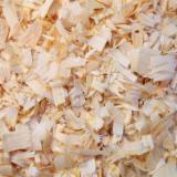 Finden Sie Holzlieferanten auf Fordaq - AGRO-FEED - Europäische Schwarzkiefer Sägehackschnitzel