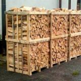 Finden Sie Holzlieferanten auf Fordaq - AGRO-FEED - Buche, Birke, Eiche Brennholz Gespalten