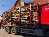 Lemn De Foc, Brichete/peleţi, Deşeuri Lemnoase - Deșeuri Molid 2500lei - camionul