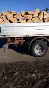 Firewood, Pellets and Residues - Beech, Acacia, Oak Firewood/Woodlogs Cleaved