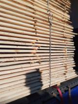 Find best timber supplies on Fordaq - PRONIKGROUPPL Sp. z o.o. - Spruce , Pine - Scots Pine Packaging timber from Belarus