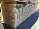 Europejskie Drewno Iglaste, Drewno Lite, Jodła Pospolita , Sosna Zwyczajna - Redwood, Świerk - Whitewood