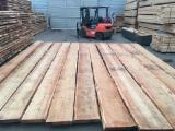 The Largest Lumber Network - See Lumber Boards Suppliers And Buyers - 25-63 mm Unedged Fresh Siberian Larch Timber