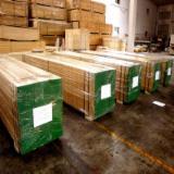 LVL - Laminated Veneer Lumber - Vendo LVL - Laminated Veneer Lumber Betulla, Eucalipto, Rovere Ucraina