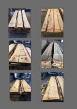 Trouvez tous les produits bois sur Fordaq - Timtrade Sarl - Vend Plateaux Dépareillés Chêne