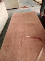 Vietnamese Commercial Plywood_Sapele Plywood