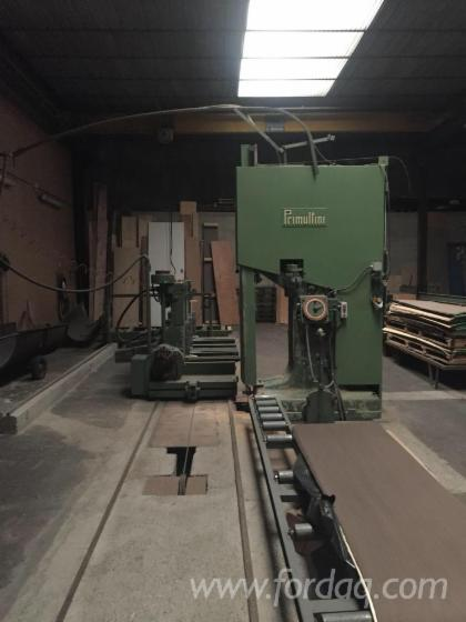 Used-Primultini-1100-Resawing-Machine
