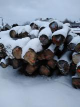 Hardwood  Logs Sycamore Maple - Sycamore Maple Saw Logs, 25 m3/spot