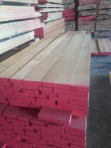 Find best timber supplies on Fordaq - TIMBEX (Timbex Iberica, S.L.) - Lime Tree (Tilia) , 26-50 , 3/4 Sides Clean