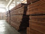 Find best timber supplies on Fordaq - TAVELLA GIORGIO E FIGLI SNC - Niangon Half-Edged Boards Italy
