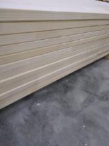 Panele Z Litego Drewna, Świerk - Whitewood