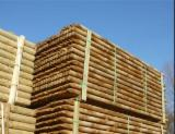 Wood Logs For Sale - Find On Fordaq Best Timber Logs - 500-1000 m3 Rounded poles class 3