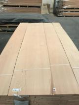 Natural Veneer, Beech, Flat Cut, Plain