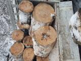 oferta lemn de foc