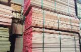 Trouvez tous les produits bois sur Fordaq - Safeway  Agro LLC - Vend Sciages Bouleau