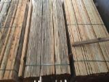 Trouvez tous les produits bois sur Fordaq - BLACK SEA WOOD TRADING Co. - Vend Charpente, Poutres, Pièces Equarries Pin - Bois Rouge
